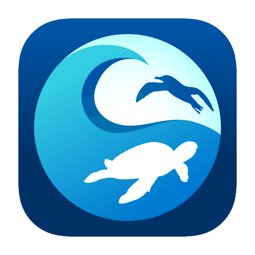 CleanSwell App (PNG)